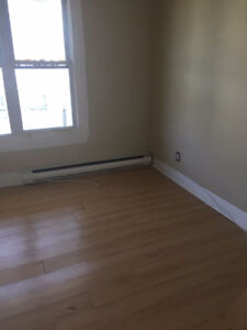 3 bedroom apartment ($750 plus you pay utility)