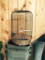 Cage Cockatiel, Insépable ou tourterelle.