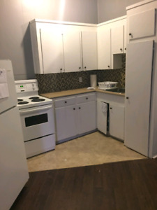 Bachelor apartment on Division St available Sept 1