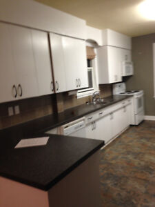 House available Oct. 1 - includes semi-private basement suite