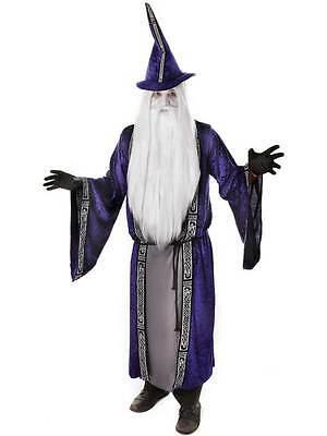 Adults Purple Wizard Robe & Hat Fancy Dress Costume Halloween Book Week Outfit ()