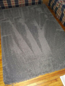 Area Rug in very good shape, no stains. 93x63 Welland
