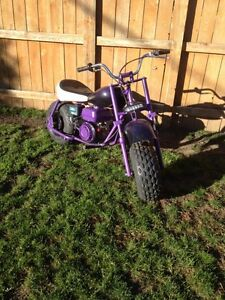 Purple and black 208cc baja