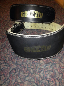 Grizzly back brace London Ontario image 1