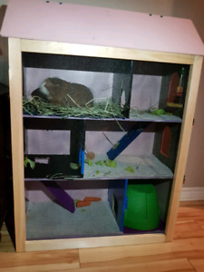 BIG Hamster cage