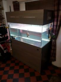 Large 4x2x2 fish tank / aquarium