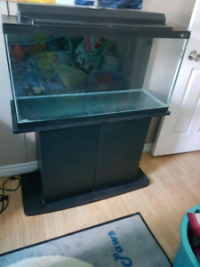 35 gallon fish tank and stand