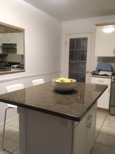 GRANITE island TOPS on SALE for $275 plus, ready to go Kitchener / Waterloo Kitchener Area image 1