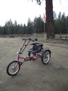 PAV3 Wheel Adult Trike Bike Vehicle Holds up to 500 lbs Like New