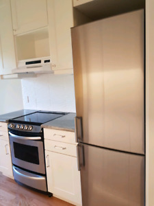 Newly Renovated 2 bedroom apartment- Aberdeen and Dundurn