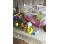 Large Hamster 2 Level Cage