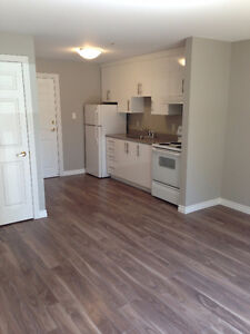 Beautiful 2 Bedroom Apartment available June 1st