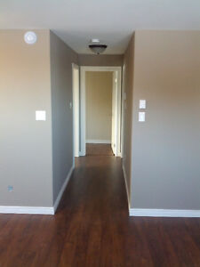 Modern 2-bedroom apartment available St. John's Newfoundland image 7