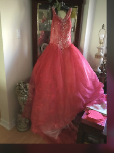 Red fushia Cinderella gown,comes with shoe and crown