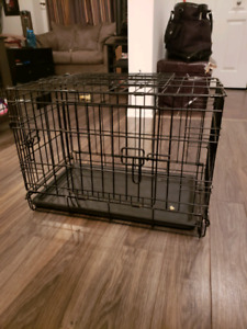 Cage chien chiot puppy dog