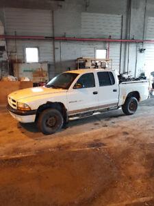 Pick-up Dodge Dakota
