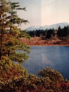 43 Acres with private lake on central Vancouver Island