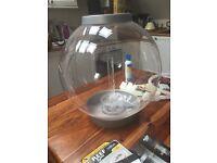 30 litre biOrb fish tank
