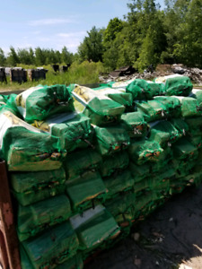 Premium Bagged Firewood ( Wholesale prices)
