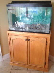 29 gallon fish tank and stand