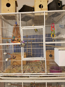 Large stackable bird cages