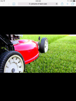 Wanted lawn care grass cutting