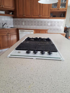 Kitchen Renovation sale-Appliances and counter top