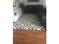 black and white low pile rug