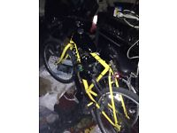 50cc mountain bike, not mini moto/ dirt bike