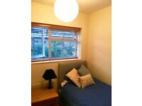NEAR TO ALL WHAT YOU WANT!! STREATHAM , nice and cozy box room available to rent