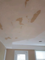 STUCCO/POPCORN REMOVAL SMOOTH CEILINGS