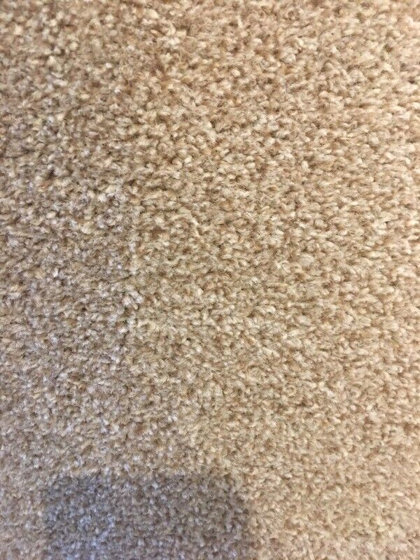 Carpet. Brand new.