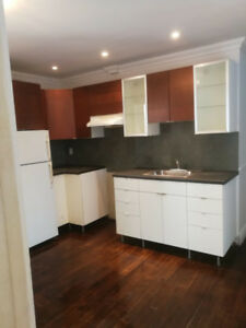 NDG Nice 31/2 apartment for rent——available now