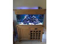 Solid Oak Marine Aquarium (complete setup)