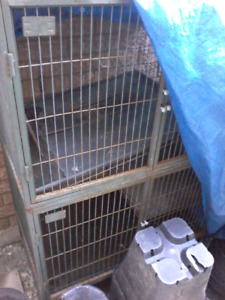 Large 2 story cage for sale
