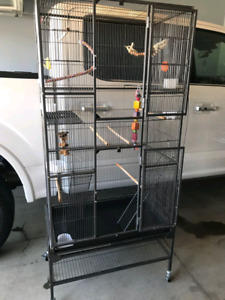Large dream cage for birds