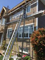 Recherche menuisier apprenti pour rénovation