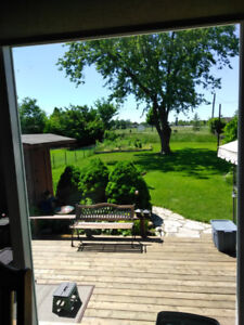 Rented!!! Beautiful bachelor bsmt apt with gorgeous backyard!