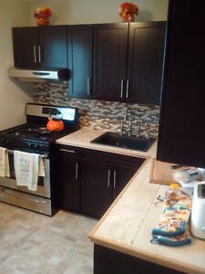 Heart of Wortley Village Full Reno NEW Hrdwood/Tile/Kitchen/Bath London Ontario image 1
