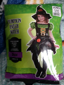 """Large Girls """"Pumpkin Patch Witch"""" costume"""