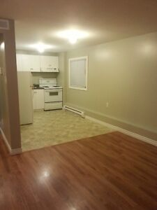Bright 2 bedroom basement apartment  Avail. March