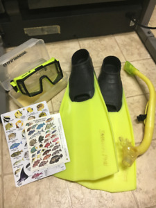 Scuba Gear - Flippers, goggles, mouthpiece and fish guide