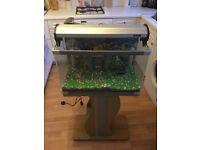 Aquarium / Terrarium Fish Lizard Tank with Stand and Accessories