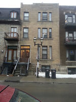 1 Bed room Apartment at McGill Campus