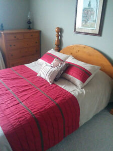 Room available for mature student/professional