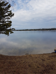 Lake Front Cabin - McIntosh Point