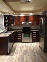Kitchen Cabinets, Counters, and Sink for Sale