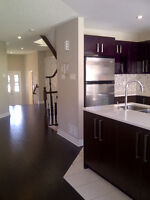 BRAND NEW townhome,3bd/2.5bath,1845sf, Kanata,Free in Dec. 2015