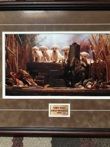 Ducks Unlimited Framed Painting