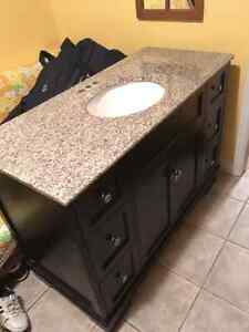 "48"" x 22"" Fairfield Vanity"